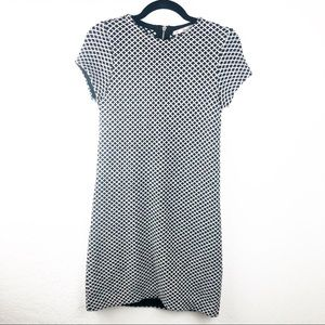 Zara Knit wool blend short sleeve dress medium